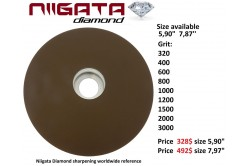 Niigata Diamond Stone 8