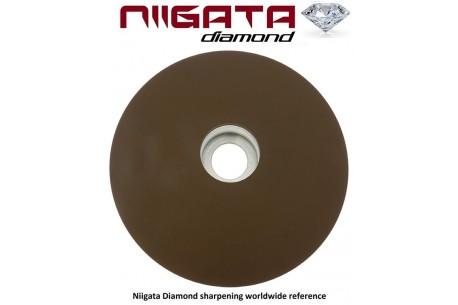Niigata Diamond Stone 400